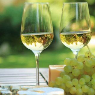 Vino bianco: i vitigni più usati e interessanti!