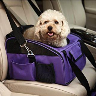 Come trasportare il cucciolo in auto per la prima volta