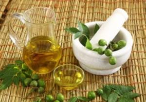 Cinque benefici dell'olio di Neem